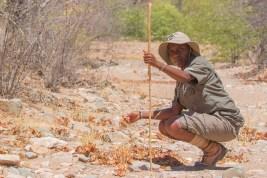 Natasha Gomes anti-poaching rhinos Namibia