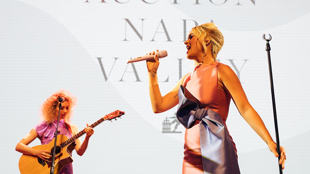 Auction Napa valley 2019