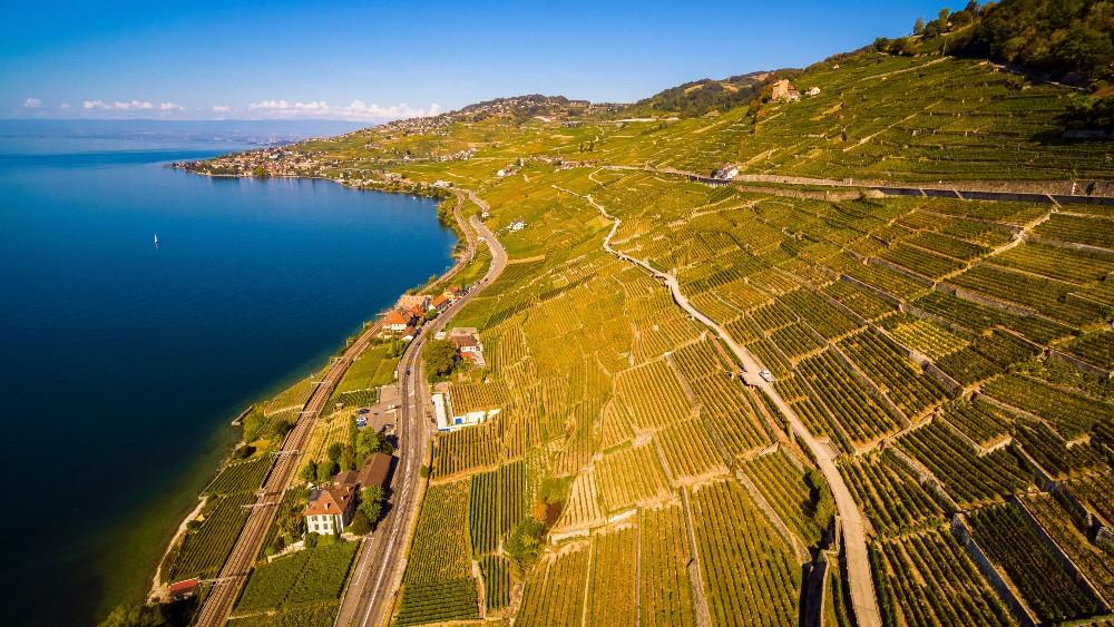 The Lavaux wine region in Switzerland