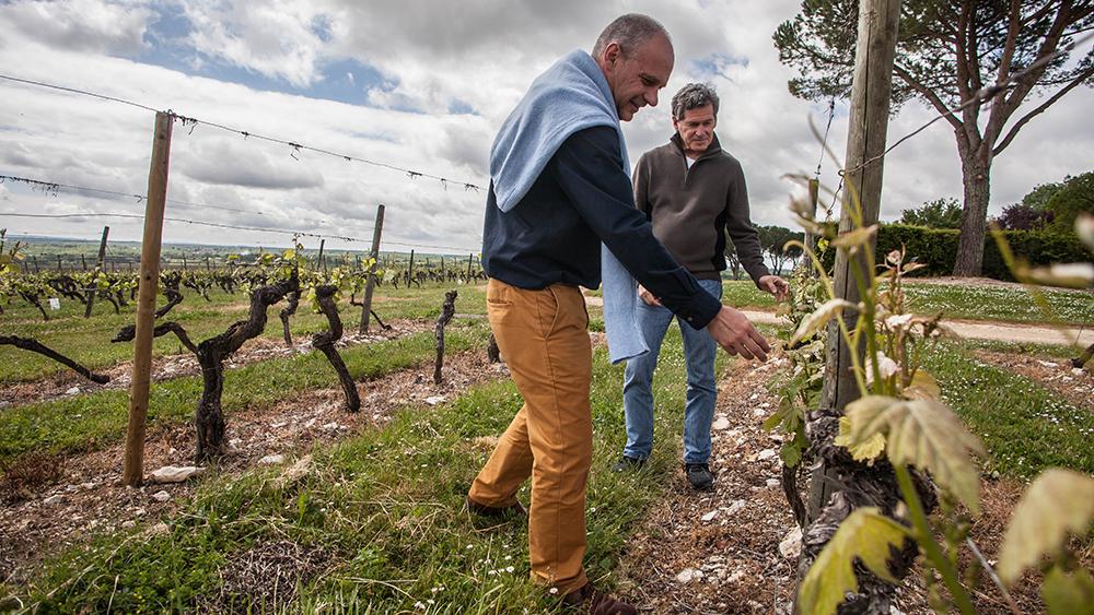 Bertrand Gabriel Vigouroux and Paul Hobbs, Crocus Wines partners