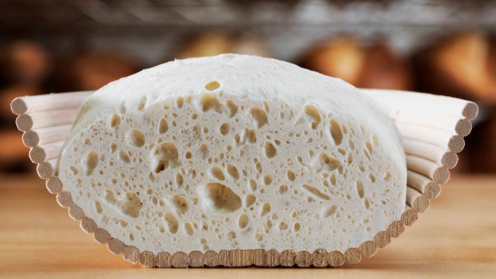 modernist bread dough