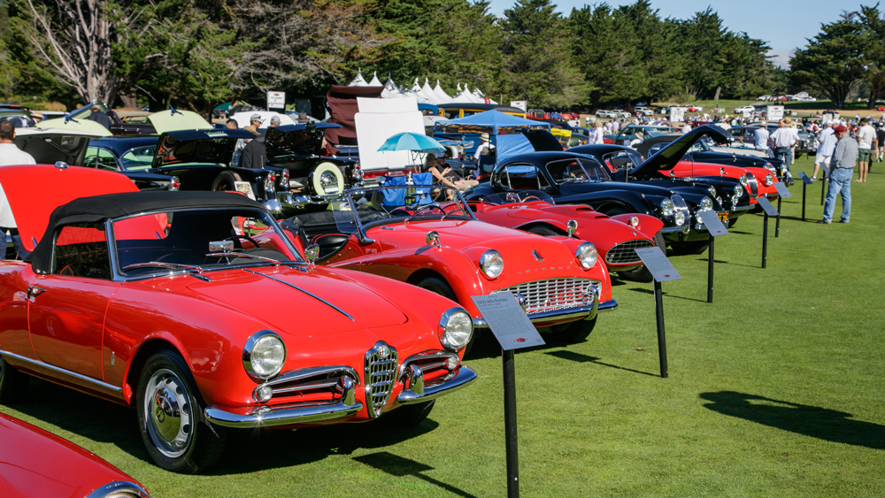 A scene from the 2018 Hillsborough Concours d'Elegance.