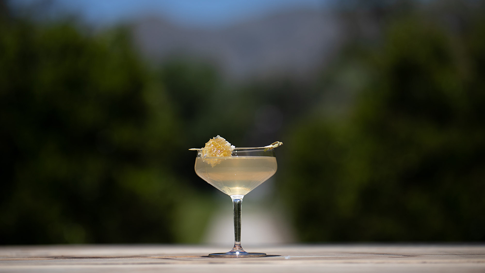 seedlip cocktail
