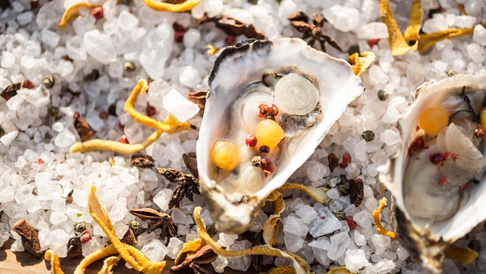 oysters m georgina