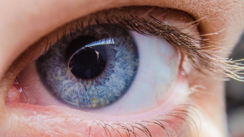 A human eye looking at camera.