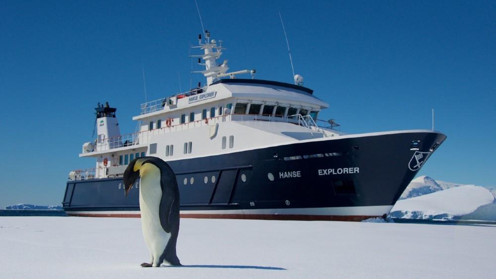 Nota Bene superyacht Antarctic penguins