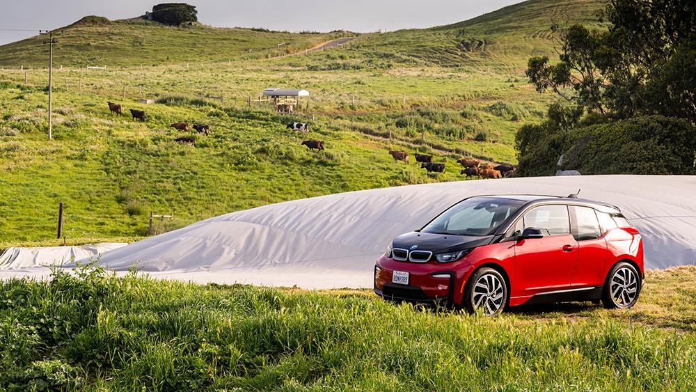 BMW renewable fuel