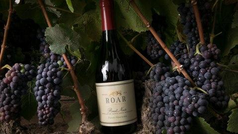 thanksgiving wine pinot noir