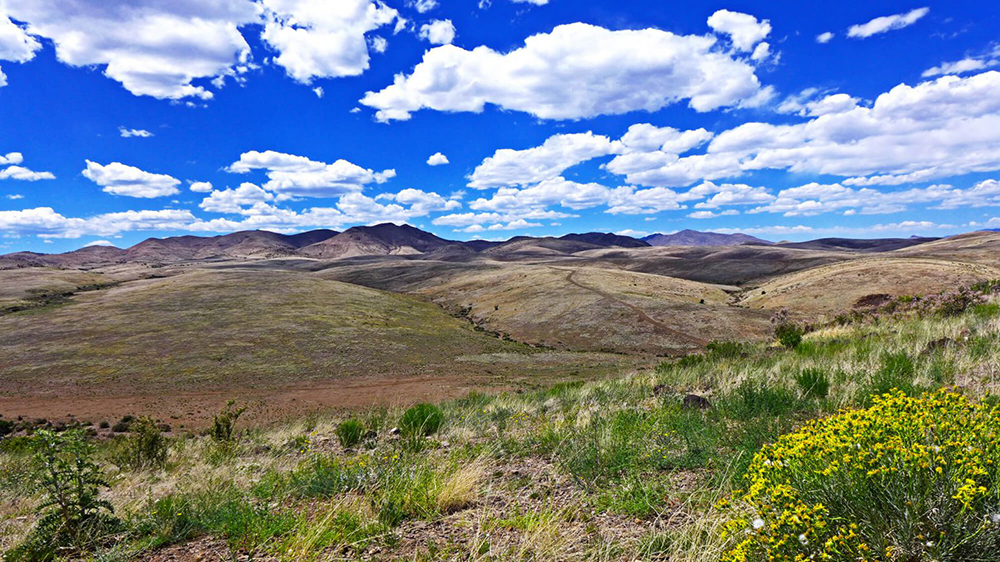 New Mexico's 156,439-acre Ladder Ranch, part of the Ted Turner Reserves