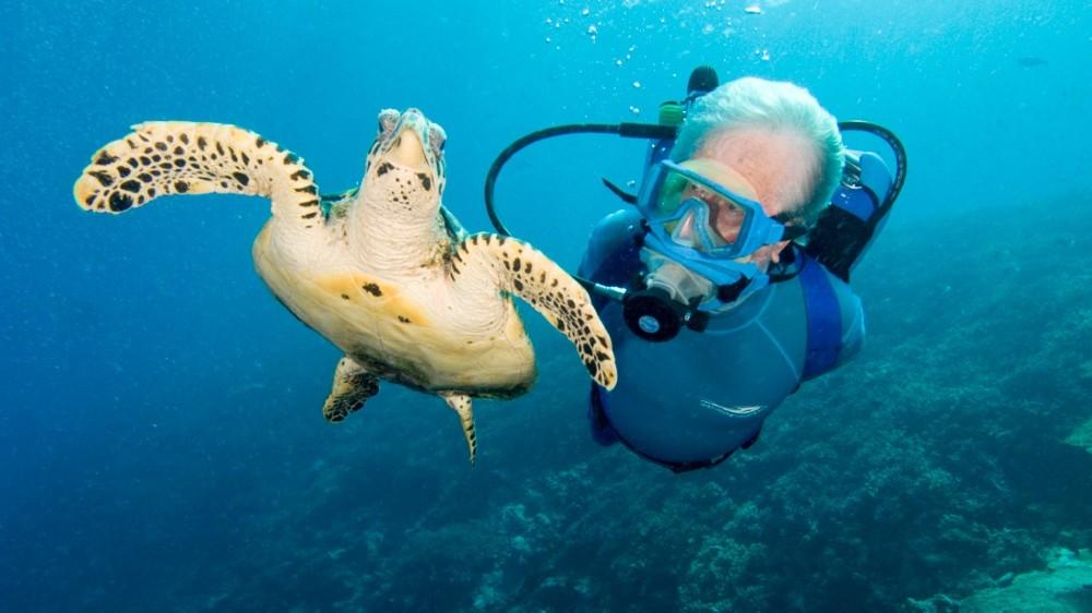 THIRDHOME Diving FIji