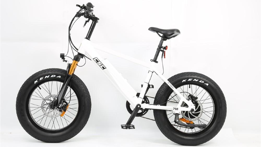 CSC's FT750-20 electric bike