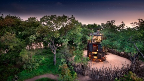 andBeyond Ngala Treehouse Kruger National Park safari