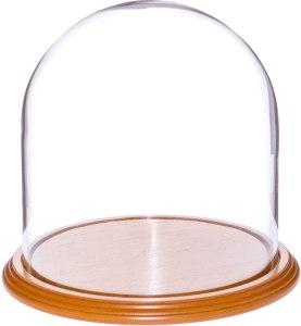 Plymor glass bell cloche