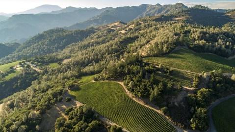 Cakebread Cellars' Dancing Bear Ranch vineyard