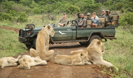 andBeyond South Africa game drive