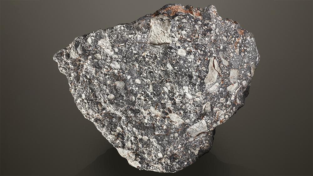 NWA 12691 Meteorite
