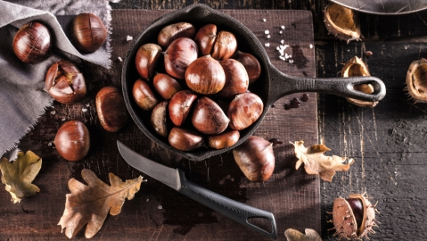chestnut knife