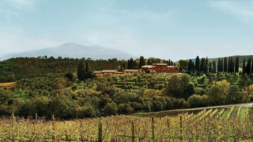 wine italy Biondi Santi