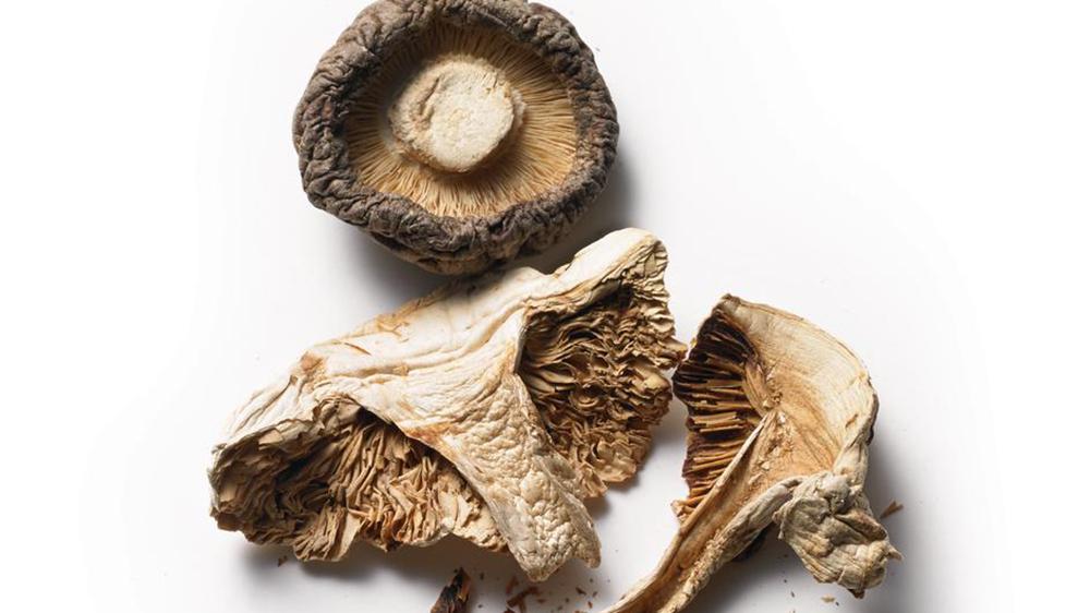 Mushrooms, Health, Wellness
