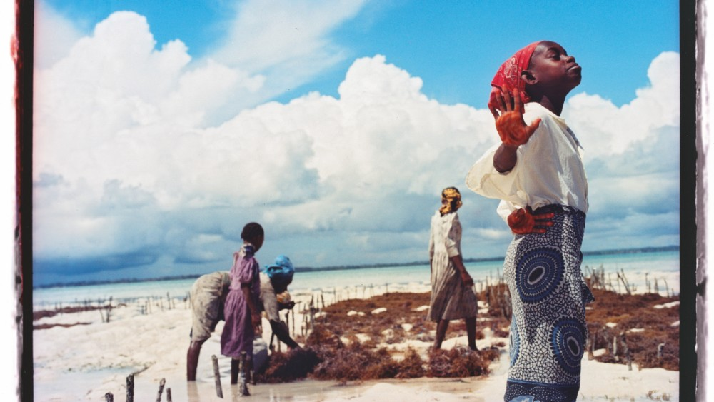 Zanzibar Assouline photography book