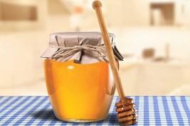 HIC Honey Dipper