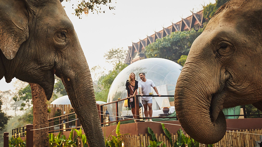 Jungle Bubble at Anantara Golden Triangle Elephant Camp & Resort