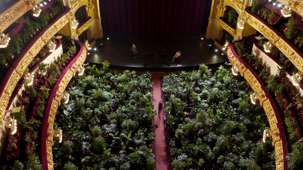 "The audience for ""Concierto para el bioceno"" at the Gran Teatre del Liceu in Barcelona on June 22, 2020"