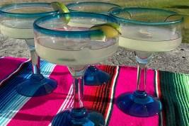 Dos Sueños Margarita Glasses