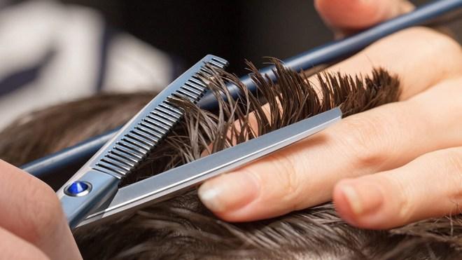 ULG Thinning Shears