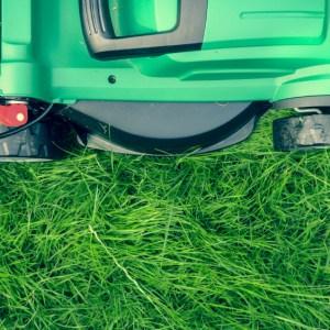 lawn mower amazon