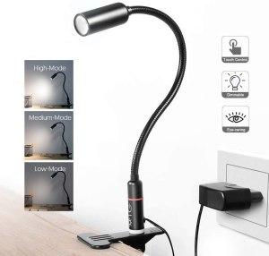Teckin Clip on Lamp