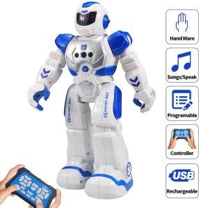 Sikaye RC Robot
