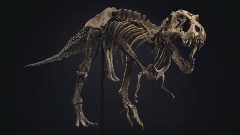 Stan T-Rex Christie's auction