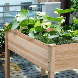 The Best Gardening Boxes on Amazon