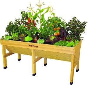 VegTrug Raised Garden Bed