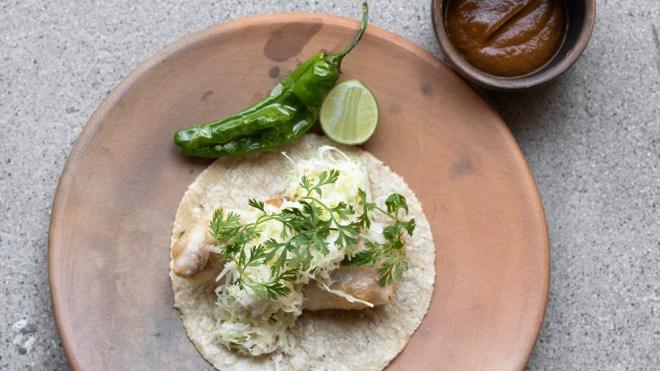 fried fish taco damian enrique olvera dtla