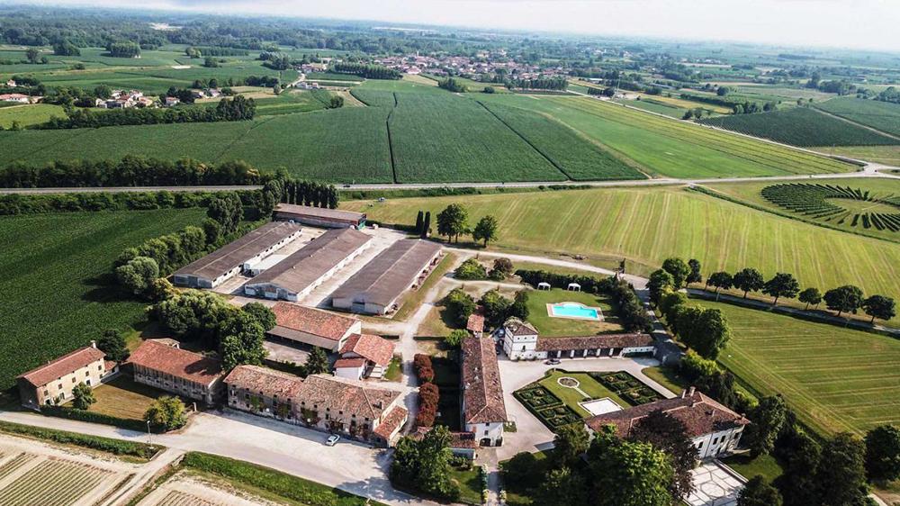 Friuli-Venezia Giulia Prosecco Estate