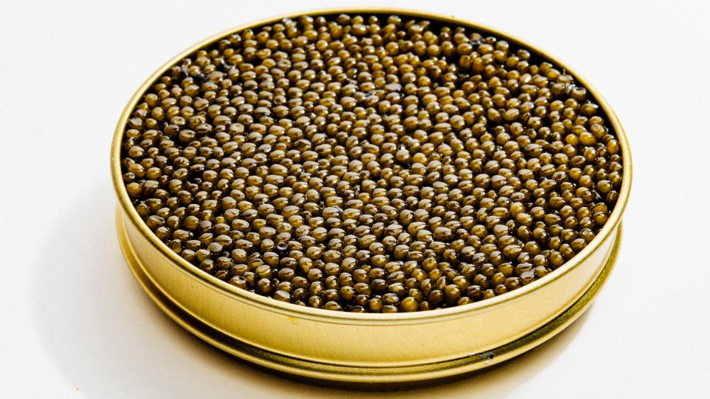 Regiis Ova Hybrid Caviar