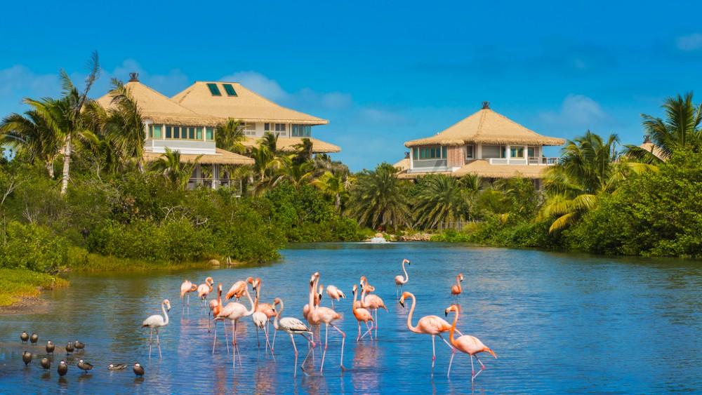 Branson Estate Moskito Island