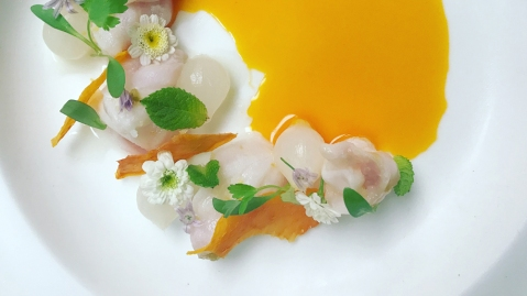 Cured-Hiramasa-Garlic-Blossom-Dehydrated-Papaya-Japanese-Mustard-Oil-Emulsion