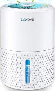 Lonove Mini Dehumidifier