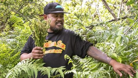 Sheldon Simeon forages in Hilo, Hawaii. Eat Real Hawaii cookbook by Sheldon Simeon. Photo by Kevin J. Miyazaki