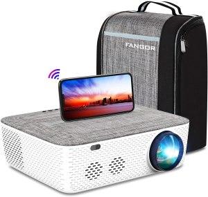 Fangor Projector