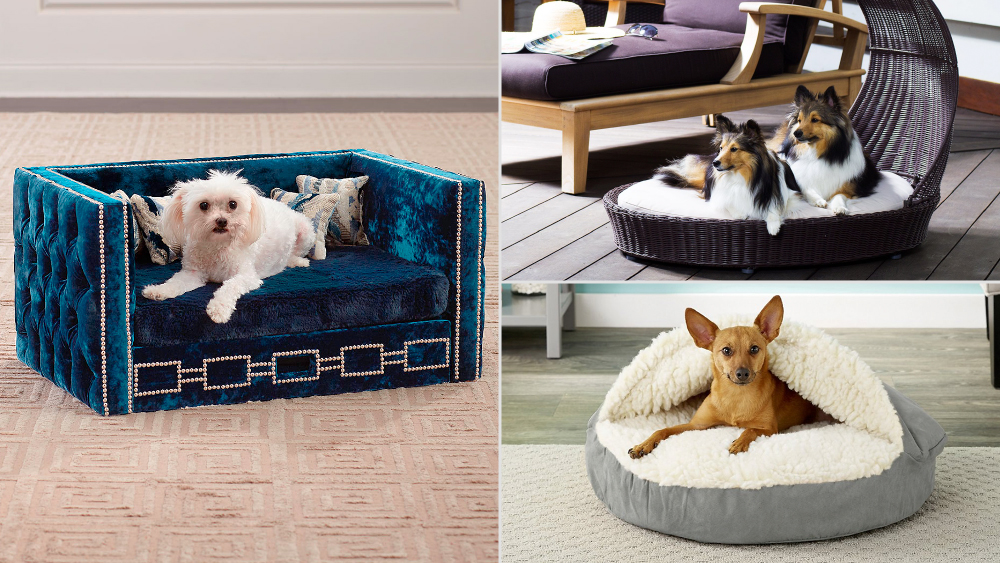 9 Plush Dog Beds That Your Prized Pup Will Love