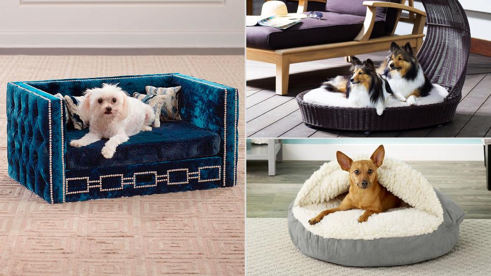Dog Beds, Home, Design