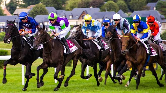 Boosting American Sport-Horse Breeding