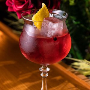 bombay bramble gin and tonic