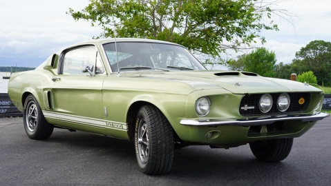 An unrestored 1967 Shelby GT500.