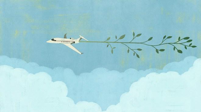 BOTB, Aviation