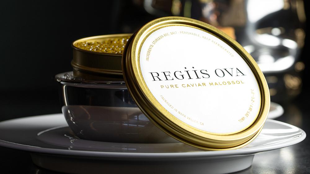 Regiis Ova Lounge